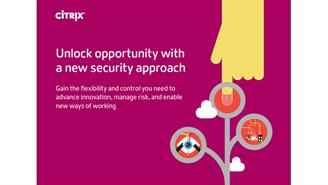 Citrix whitepaper seguridad
